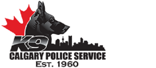 Полиция расследует поведение пнувшего собаку проводника
