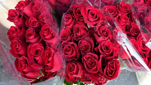 «Розовый» дефицит в Онтарио: в супермаркетах цветы есть