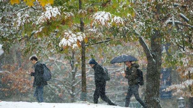 Метеосводка для Торонто: снег с дождем ночью и утром