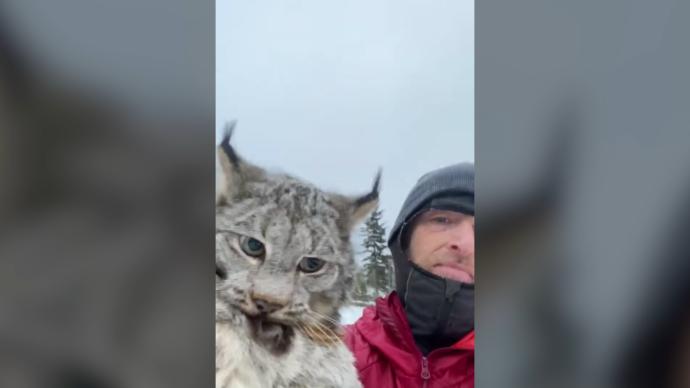 Канадский фермер прочитал лекцию пойманной рыси