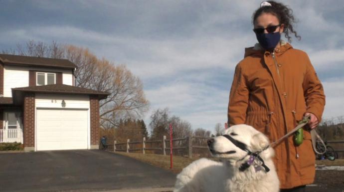 Собака спасла хозяйку